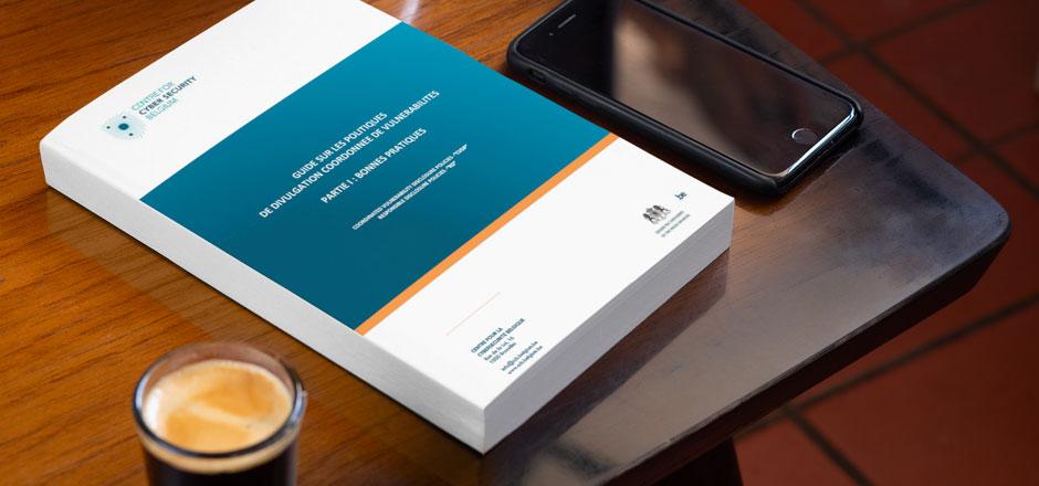 Guide sur les politiques CVDP en Belgique